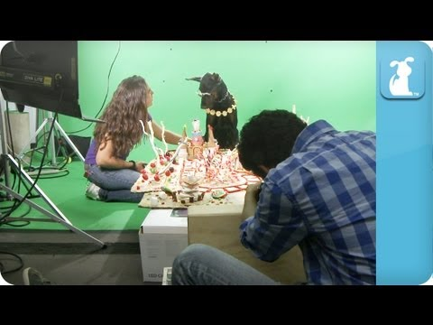 Behind the Scenes - Katy Puppy - California Grrrs