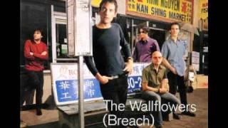 Watch Wallflowers Birdcage video