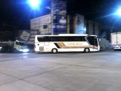 KejarKejaran Bus Pahala Kencana VS PO Haryanto Saksi Bus Gunung Mulia, Shantika