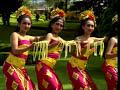 Tari Pendet Dari Bali Indonesia image