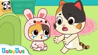 Baby Kitten, Don't Jump on the Bed | Kids Safety Tips | BabyBus Safety Series | BabyBus