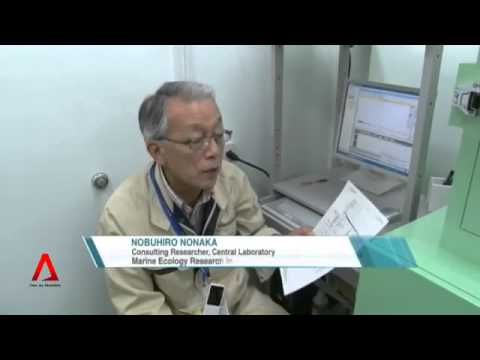 3900 Bibliothek News Asia JAPAN  Effects of radiation on marine products