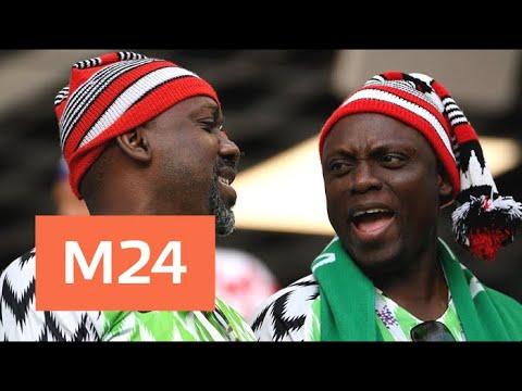 Десять нигерийцев в Балашихе остались без крыши над головой - Москва 24