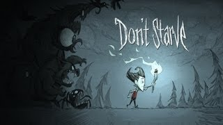 Taking a Look at:  Don't Starve