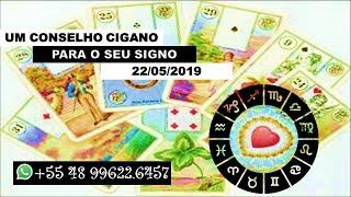 Diário 22/05 com Karine Ouriques