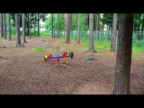 Костомукша - белка  в детском саду