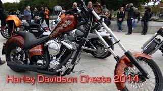 HARLEY DAVIDSON  MotoGP 2014