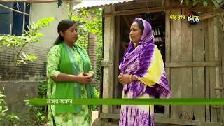Deepto Krishi/দীপ্ত কৃষি -টার্কি খামার/কুমিল্লা, পর্ব ২৭১