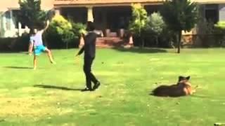 Imran Khan enjoying Cricket with Reham Khan kids in Bani Gala
