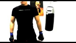 Mixed Martial Arts Speed Training Motivation