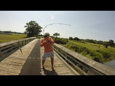 Big Boy Baits Georgia Jumbo: Redfish, Black Drum, and Flounder Fishing