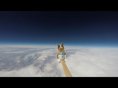 Two children send a camera with a sensor package and a picture of their cat to the edge of space using broken arrow shafts, wood, styrofoam and a weather balloon, reaching an altitude of 78 thousand feet