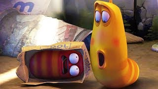 LARVA - HIDE AND SEEK | Cartoon Movie | Cartoons For Children | Larva Cartoon | LARVA Official
