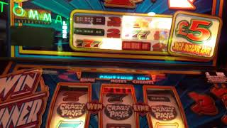 qps - crazy spinner fruit machine - jackpot on 1 spin and crazy gamble sandown iow