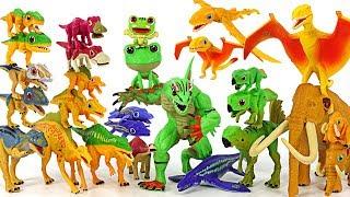 Dino Mecard Island of tiny dinosaur flog Kai, Frogamander and double figure 8 set! #DuDuPopTOY