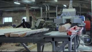 Deciduous tree sawing line