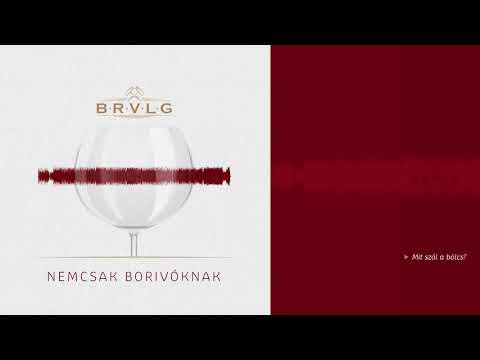 BRVLG feat. Ferenczi György - Mit szól a bölcs?