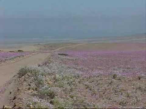 Chile lindo zona norte i youtube for Piletas publicas en zona norte