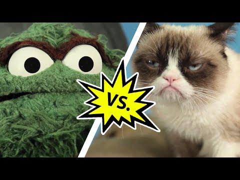 Oscar the Grouch vs. Grumpy Cat