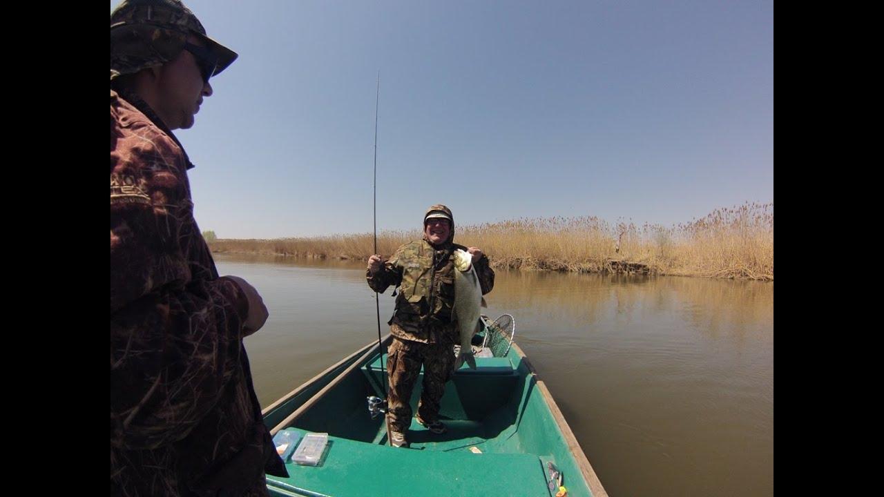 рыбалка на волге 2015г видео