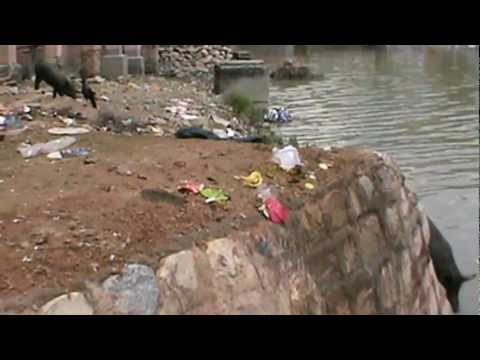 How a river is being polluted........