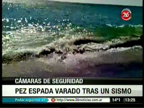 TV Cable   3 TV 20120820 131339   Videos insolitos 5