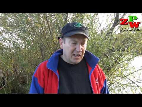 IV Tura Spławikowego Pucharu Prezesa  OPZW Szczecin 2012