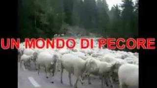 guarda questo video se usi Facebook