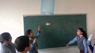 hot-air baloon  (sıcak hava balonu)