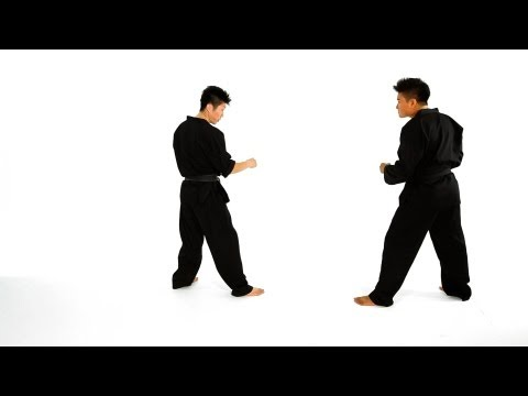 taekwondo training for beginners pdf