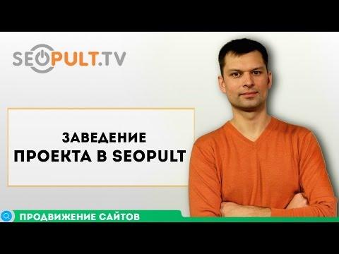 Заведение проекта в Системе SeoPult / Основы продвижения сайта. Часть 2