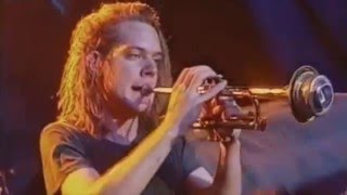 Watch Soul Asylum Caged Rat video