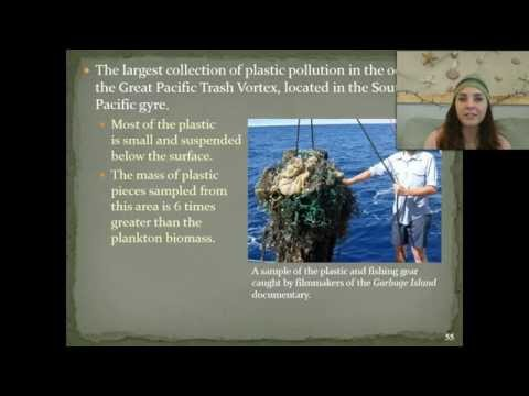 Water Pollution and Human Impact