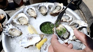 Eating the FRESHEST Oysters Along the Pacific Coast Highway | Point Reyes, California