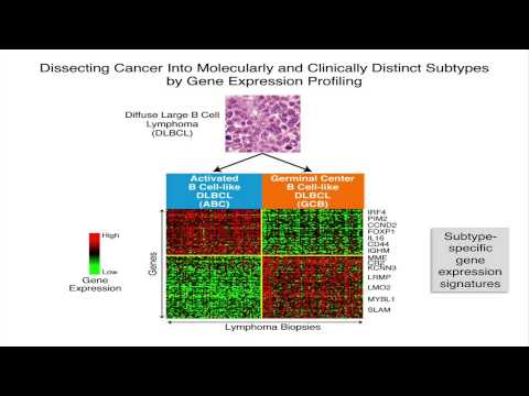 Practicing Precision Medicine in Cancer Using Genomics - Louis Staudt