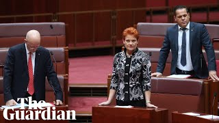 Pauline Hanson's 'It's OK to be white' motion narrowly defeated in Senate