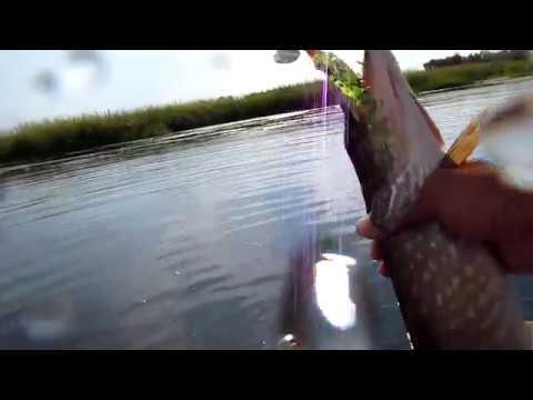иркутск рыбалка на квадрате