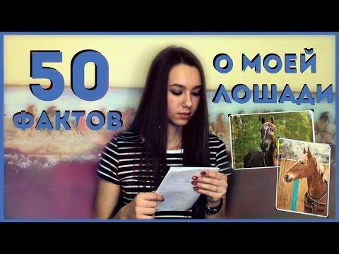 50 ФАКТОВ О МОЕЙ ЛОШАДИ