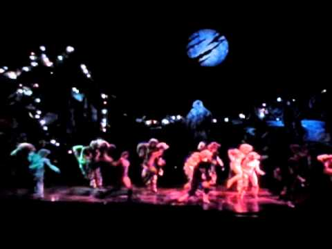 The jellicle ball andrew lloyd webber lyrics cats national tour jellicle ball stopboris Choice Image