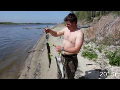 рыбалка на дону вертячий