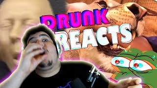 DRUNK REACT Daily Dose of Internet!