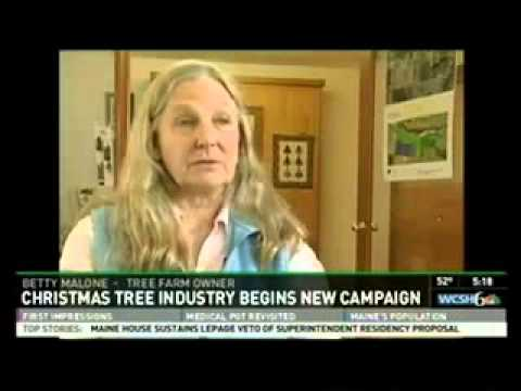 CNBC Reports on Christmas Tree Industry's Check-off  Program Delays