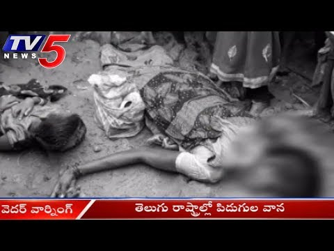 12 People killed in Lightning in Andhra Pradesh | Several People killed as Storm | TV5 News