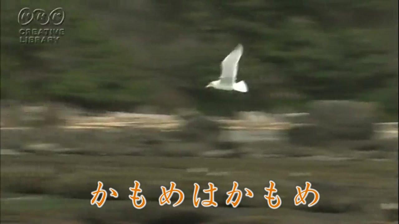 研ナオコの画像 p1_33