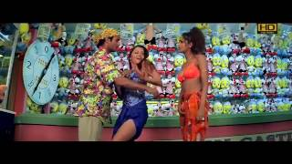 Mera Dil Tera Deewana Full HD Video Song