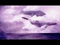 Синий кит в небе идеальная музыка для расслабления mp3