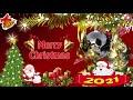 定番クリスマスソング BGM ❄ クリスマスソング 子供向け 日本語 ❄ クリスマスソング メドレー 定番 ❄ クリスマスソング ベスト2021