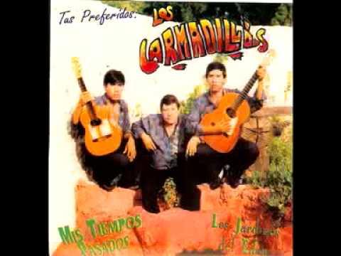 Los Armadillos De La Sierra (Mis Tiempos Pasados Original)