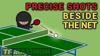Fantastic precise shots and accurate placements beside the net / Фантастические удары мимо сетки #1