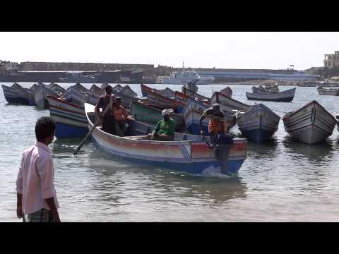 Vizhinjam Fishing Harbour - Beautiful Scenery of Fishing at Vizhinjam Harbour, Kerala, India